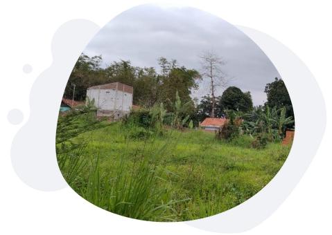 featured image pembebasan lahan